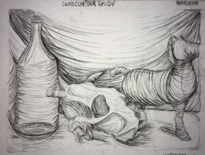 Cross contour still life study we did in class
