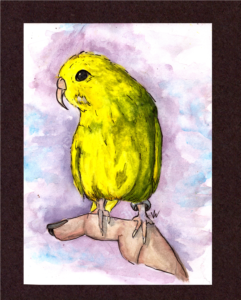 A watercolor painting I made for one of my followers. It is of their pet bird.